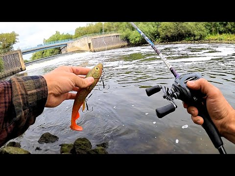 Weir Pool Pike FIshing