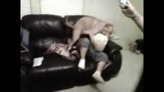 Fat boy vs dog for pillow
