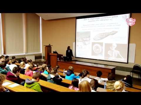 Лекция «Когда родился человек? История в 14 шагах с прологом и эпилогом»