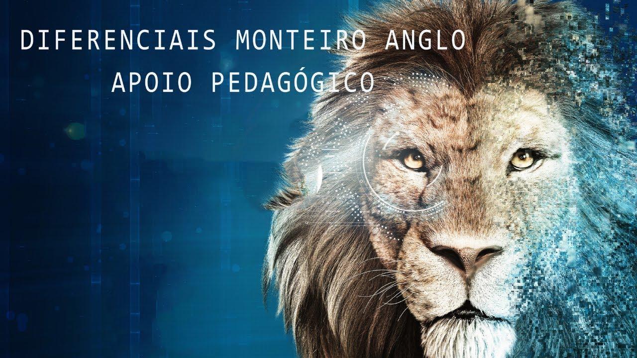 DIFERENCIAIS DO MONTEIRO ANGLO - Apoio Pedagógico