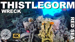 ULTIMATE Thistlegorm Scuba Dive and History | Red Sea, Egypt