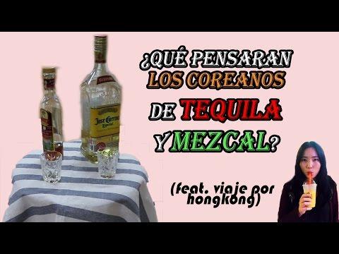 COREANOS PROBANDO TEQUILA y MEZCAL 2/2 │tequila vs mezcal vs soju! [coreanita-entrevista]