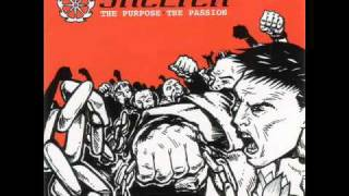 SHELTER - THE GREATER PLAN