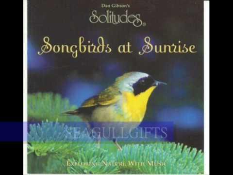 Dan Gibson - SONGBIRDS AT SUNRISE (Solitudes) - ON SALE NOW!