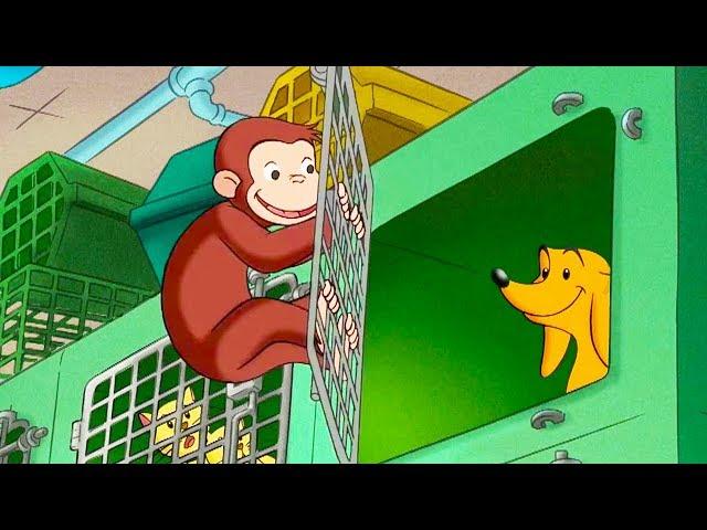 Jorge el Curioso en Español 🐵Liberen a Hundley 🐵Caricaturas para Niños 🐵Videos para niños