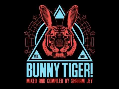 Sharam Jey & Daniel Fernandes - Give a F*** [Bunny Tiger Selection Vol. 6]