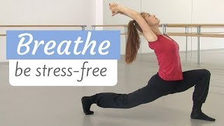 Relaxing Stretching Flow for Stress and Tension Release