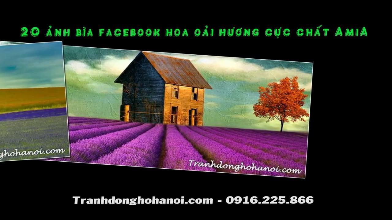 Tải ảnh bìa facebook hoa oải hương cực chất tại AmiA