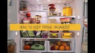 整理收纳控必看之冰箱篇   How to Keep Your Fridge Organized   Oraganizing tips  