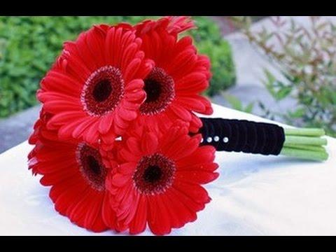 Gerber Daisy Wedding Bouquet - YouTube