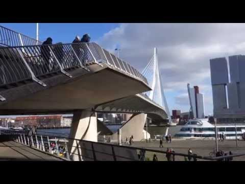 Funky Erasmus Bridge Rotterdam on a sunny Friday morning