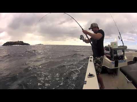 Winter Spanish Mackerel, Kings & Wahoo - Mid Nth Coast NSW