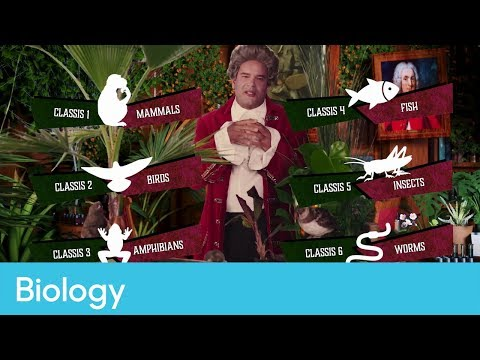 The work of Carl Linnaeus | Primary Science - SciTube