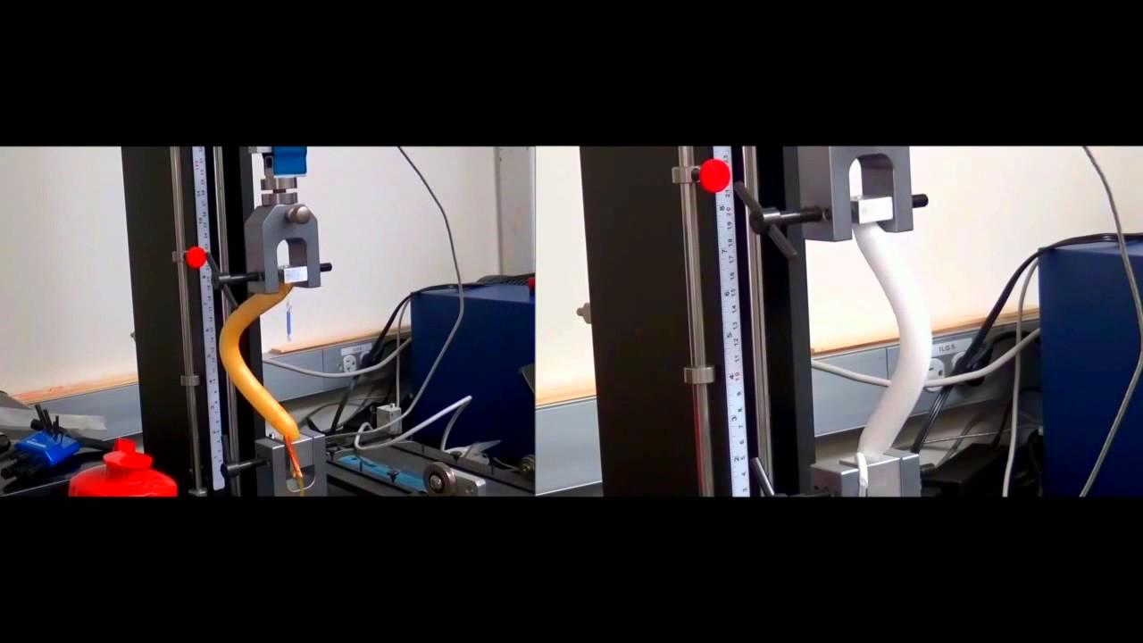 Titan Vs Ams Lgx Vertical Compression Test Head To Head Penile