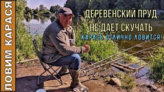Ловим карася на деревенском пруду Карась клюёт Рыбалка от души 15 июня 2021г