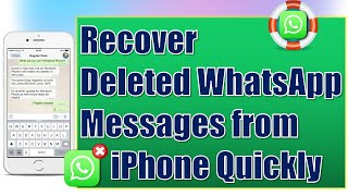 How to Recover Deleted WhatsApp Messages on iPhone for Free