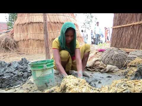 पीलीभीत पूरनपुर की न्यूज़| Pilibhit Puranpur Ki NEWS|पीलीभीत पूरनपुर से बड़ी खबर | by the thaat