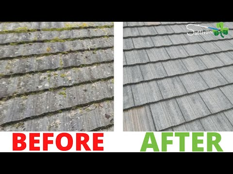 How To Moss Removal Shake Roof Omaha, Nebraska