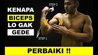 Download Video Cara Membesarkan Otot Biceps - Kesalahan Latihan Tangan || Bicep Tricep Besar MP3 3GP MP4