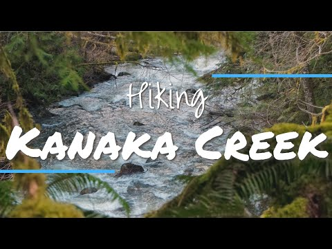 Cliff Falls Hike In Kanaka Creek Regional Park