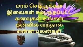 kanavu palangal in tamil part5 |Akila creations