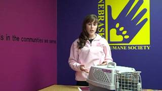 Dogs & Puppies 101 - Getting Started With Potty/crate Training