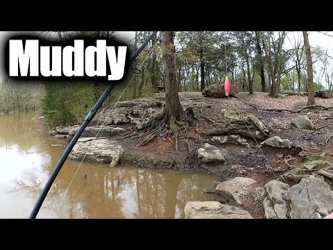 Free Download Bank Fishing With Live Bait - Float Fishing Worms In Muddy Water Mp3 dan Mp4