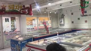 [로건tv] 먹방탐험대 아이스크림할인마트에서 거북알 사…