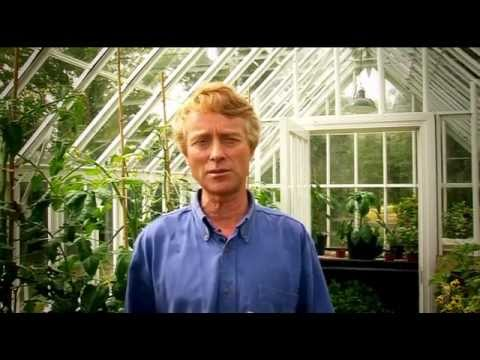 Growing Green: Grow Your Own Fruit and Veg