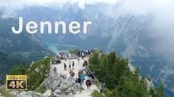 Jenner im Berchtesgadener Land in 4K