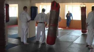 Семинар Н.А. Шеменьова в Новосибирске 2011 - часть 1