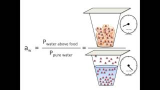 Moisture Content and Water Activity