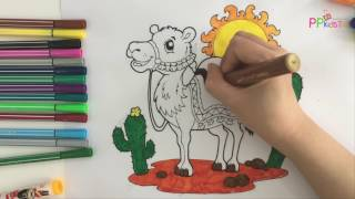 Learn coloring animals for kids - Coloring videos for kids 02