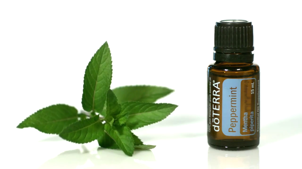 Bilderesultat for doterra peppermint
