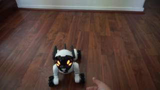Wowwee Chip Robot Dog Review