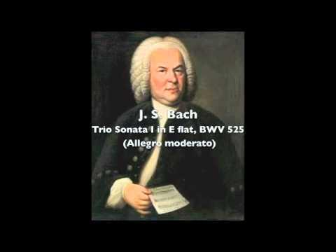 J S Bach - Trio Sonata I, BWV 525 (1st mvt).m4v