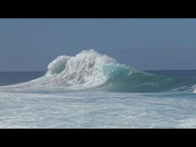 SurfCrazy11 16