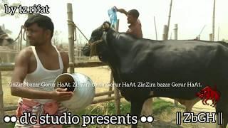 184 | Aussie Bull Asking 3 lakhs | shower time | village haat | Paragram Diaries | ZbGH 2019