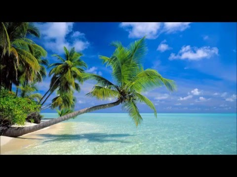 New Best Vocal Deep Hause Music / Chill out Mix / Music for Relax 2016 / Vol. 1