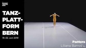 Tanzplattform Bern 2019