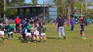 4- Rugby Club Universitario Rosario M11 - Encuentro en Duendes 09/06/2018