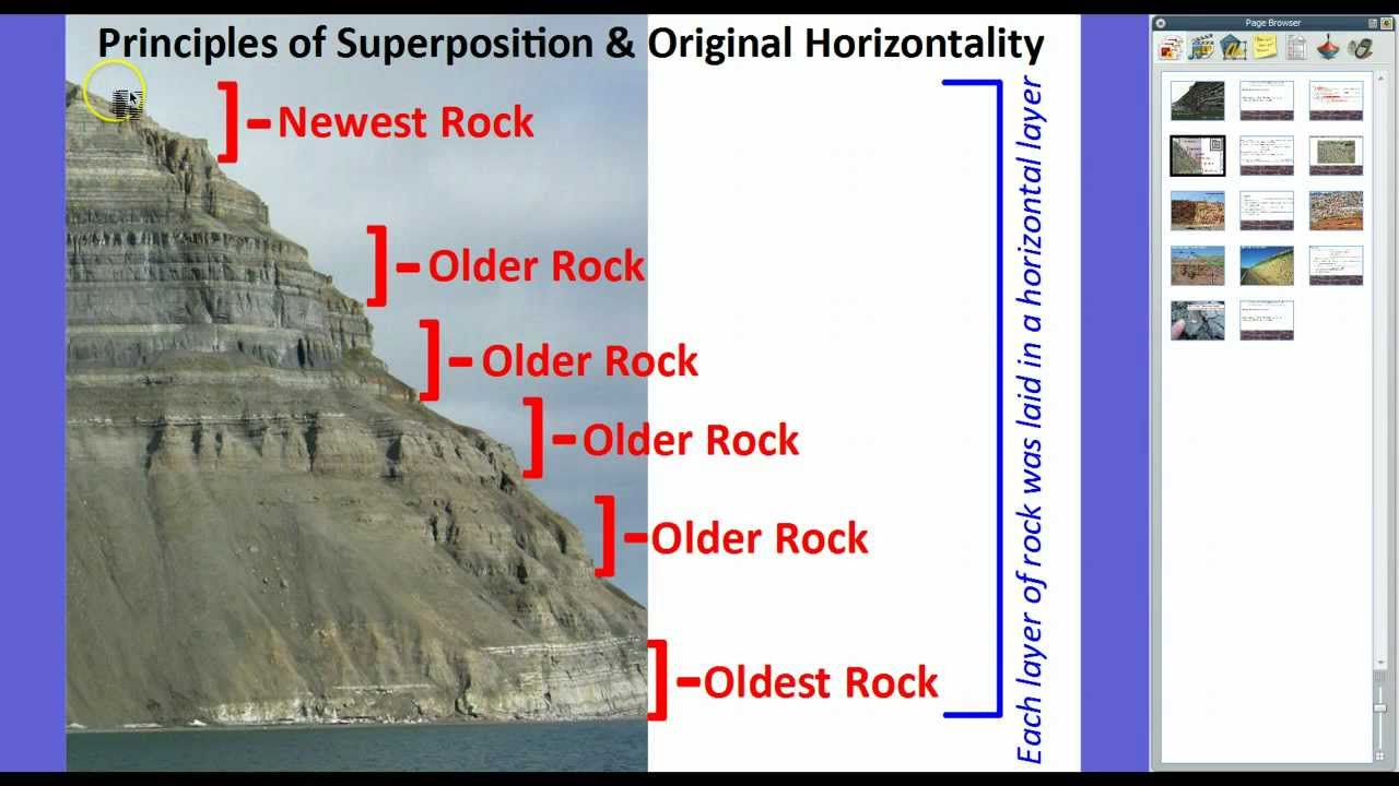 Examples+Of+Relative+Age+Dating Index Fossils & The Law of ...
