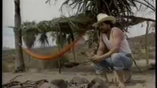 Los Invasores De Nuevo Leon Playa Sola 1
