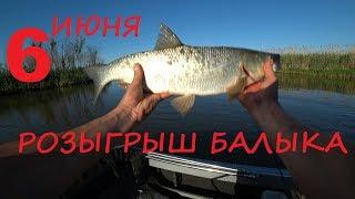 Лучшая рыбалка. 11 жерехов за 30 минут. Каждый заброс рыба. Розыгрыш балыка. Усадьба Бороздиновская