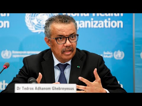 The World Health Organisation 'is a joke'