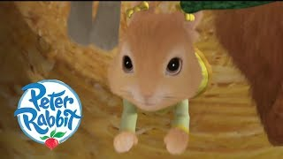 Peter Rabbit - Cottontail Goes for a Ride   Cartoons for Kids