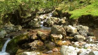 Relaxing Quiet Music with Mountain Stream for Sleep, Stress Relief