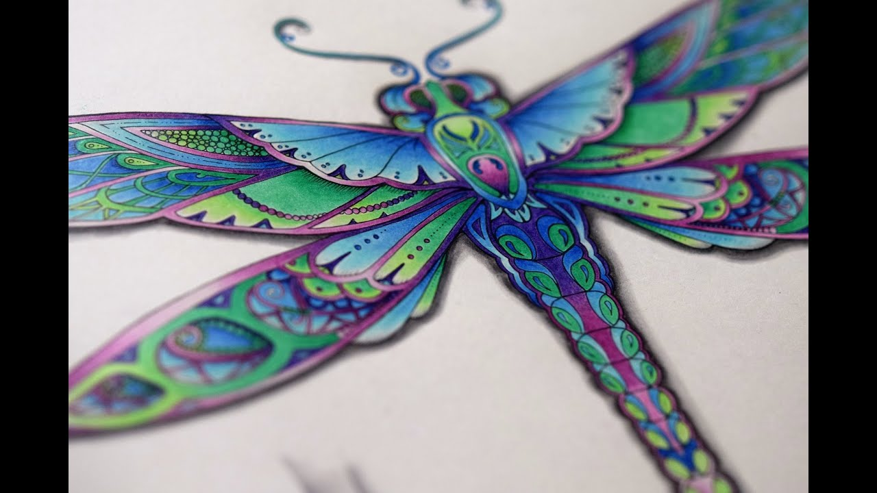Coloring in dragonflies - Johanna Basford Enchanted Forest How To Color A Dragonfly