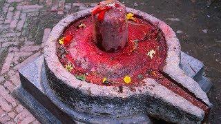 Lingashtakam - Brahmamurari Surarcita Lingam - Lord Shiva Songs - Veeramani Kannan