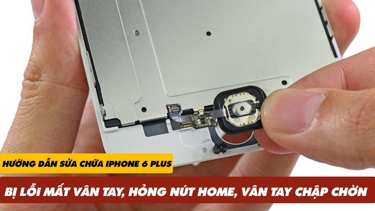 Hướng Dẫn Sửa iPhone 6 Plus Bị Lỗi MẤT VÂN TAY, HỎNG NÚT HOME, VÂN TAY CHẬP CHỜN   Truesmart